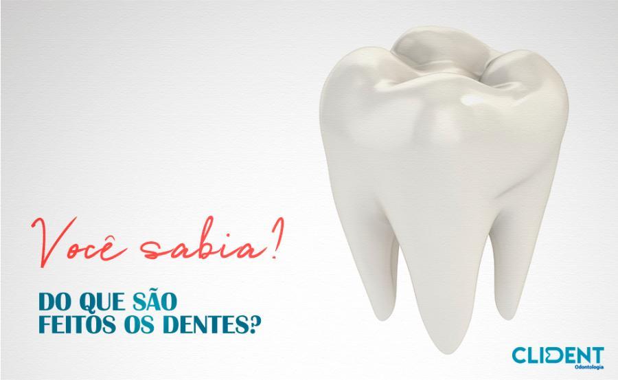 Você sabe do que são feitos os dentes?