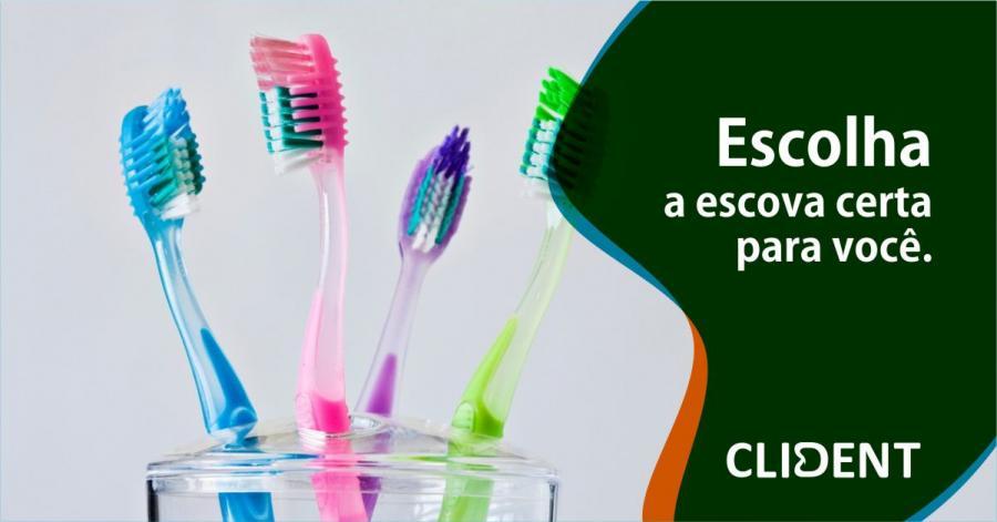 Escolha a escova certa para você
